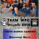 Fiche GAMEIRO steeve wpc france 2018